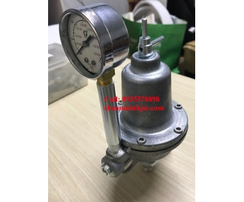VAN ĐIỀU ÁP REGULATOR GRACO Model: 203831